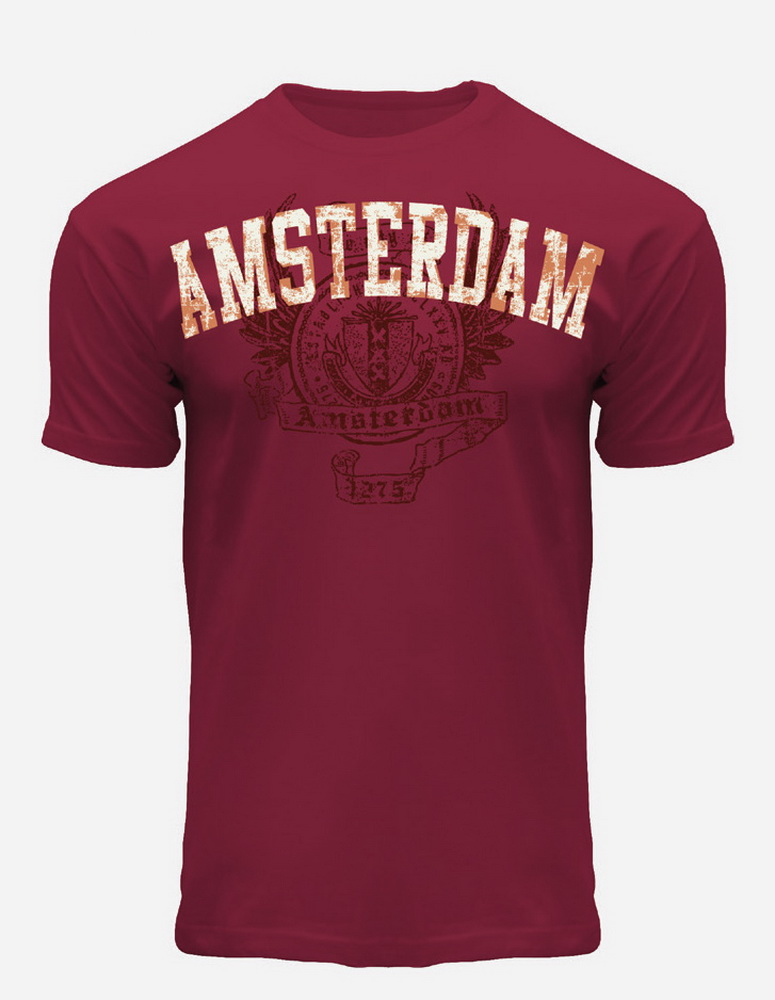 this is a Two Tone Amsterdam T-Shirt